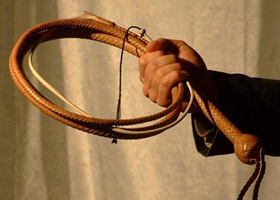 8ft Indiana Jones Bullwhip